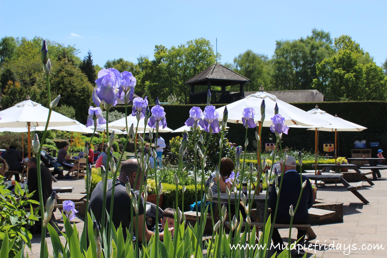 Tilgate Park Cafe