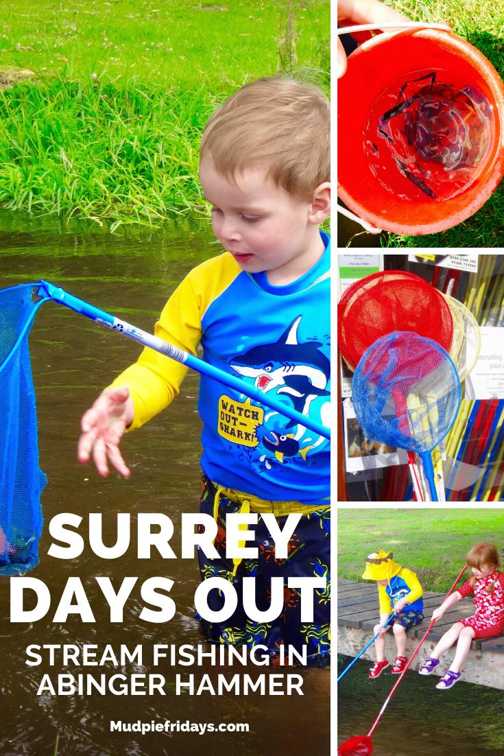Stream Fishing in Surrey Abinger Hammer