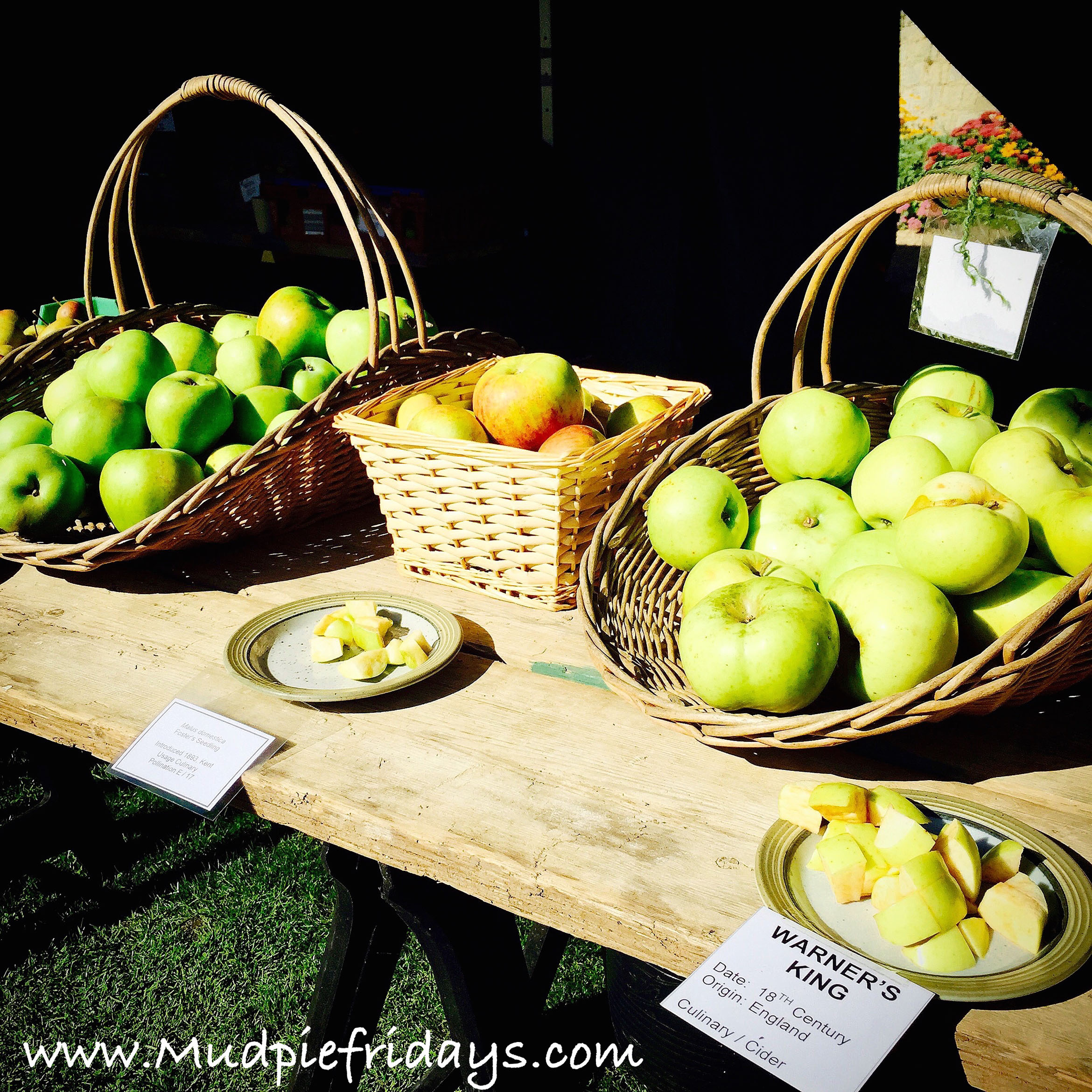 Igtham Mote - apple festival