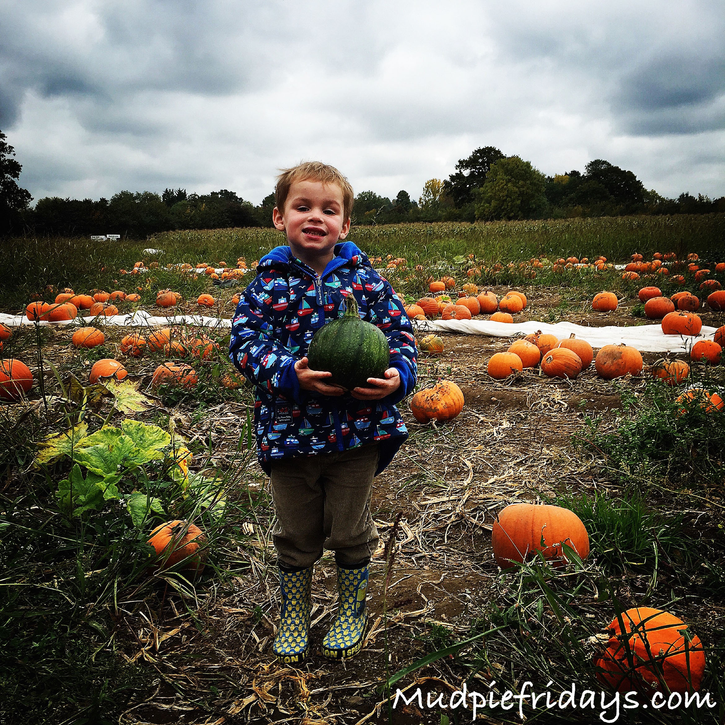 Garson's Farm Pumpkin Picking