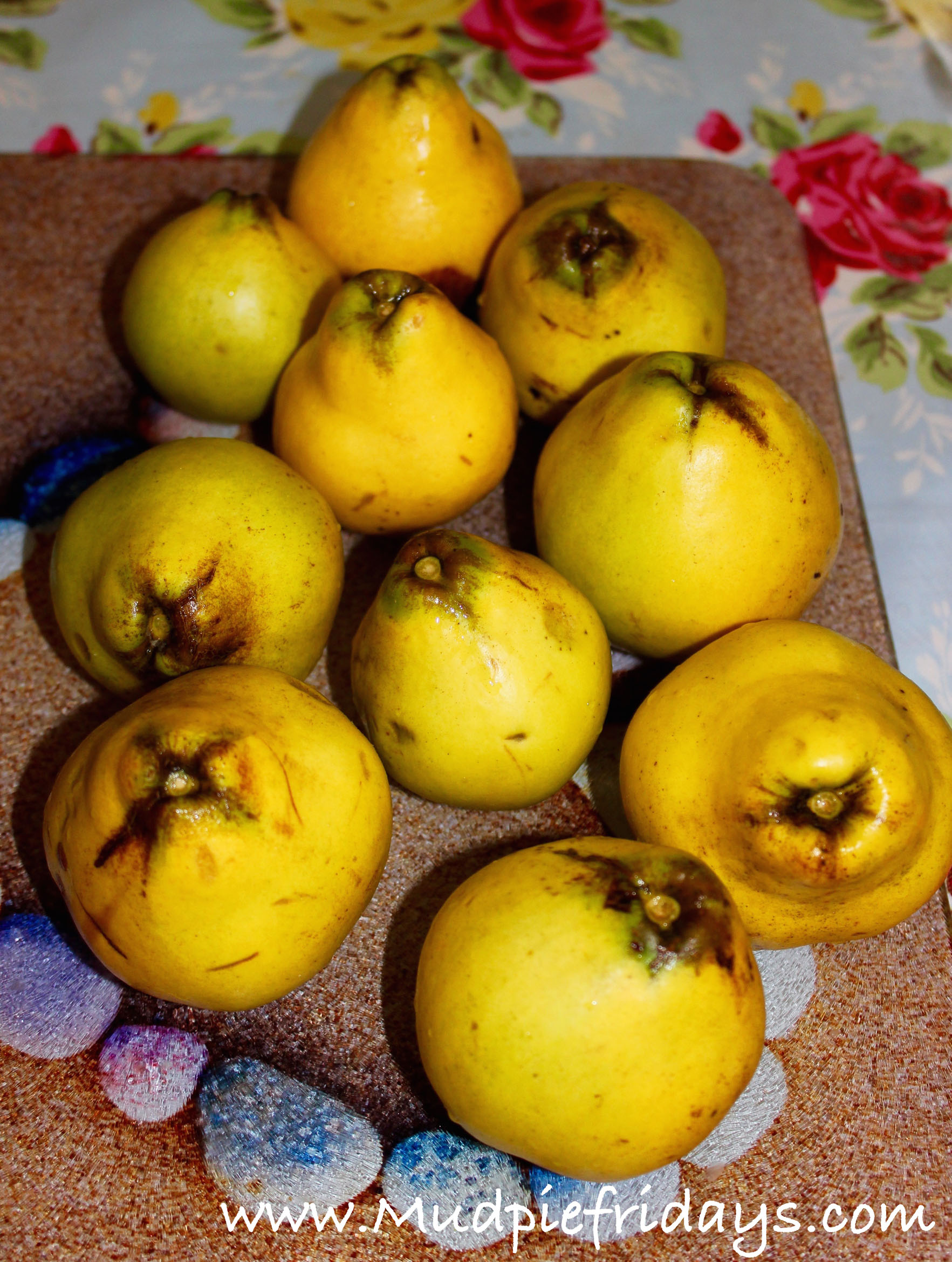 Making Quince Cheese