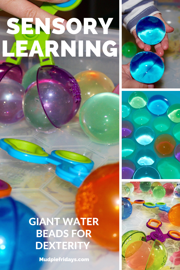 Giant Water Beads for Dexterity
