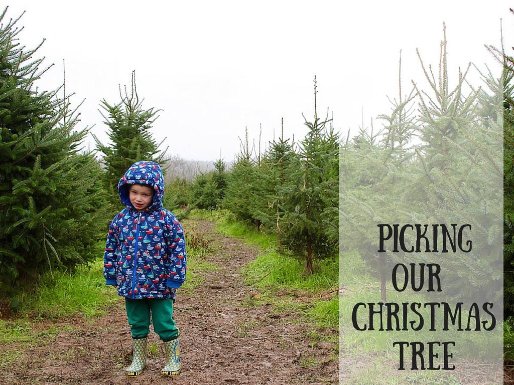 pickingour christmastree