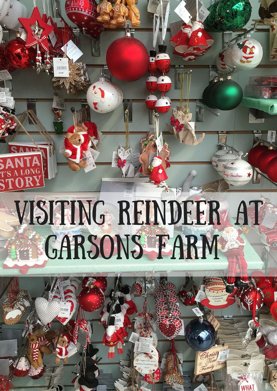 Visitng Reindeer at Garsons Farm