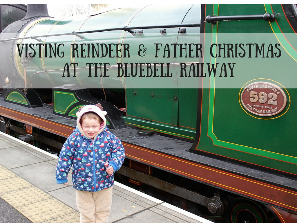 Visting Reindeer & Father ChristmasAt the Bluebell railway