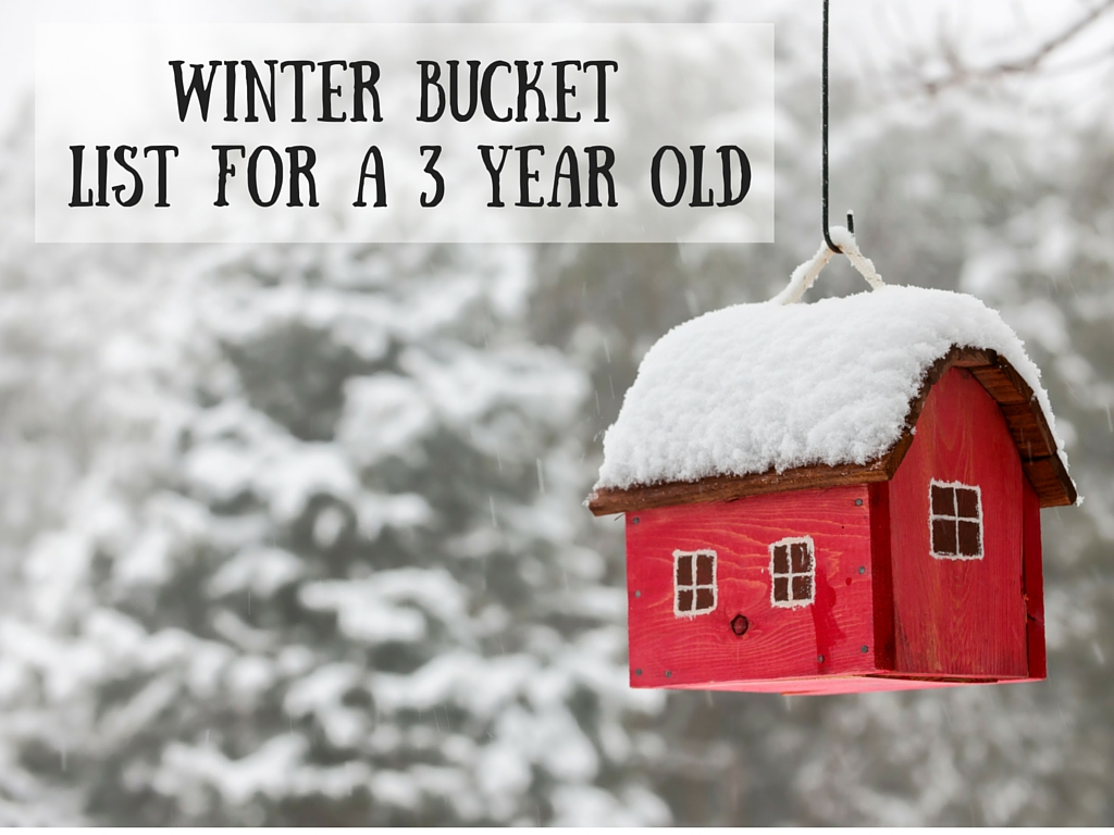Winter Bucket List for a 3 year old