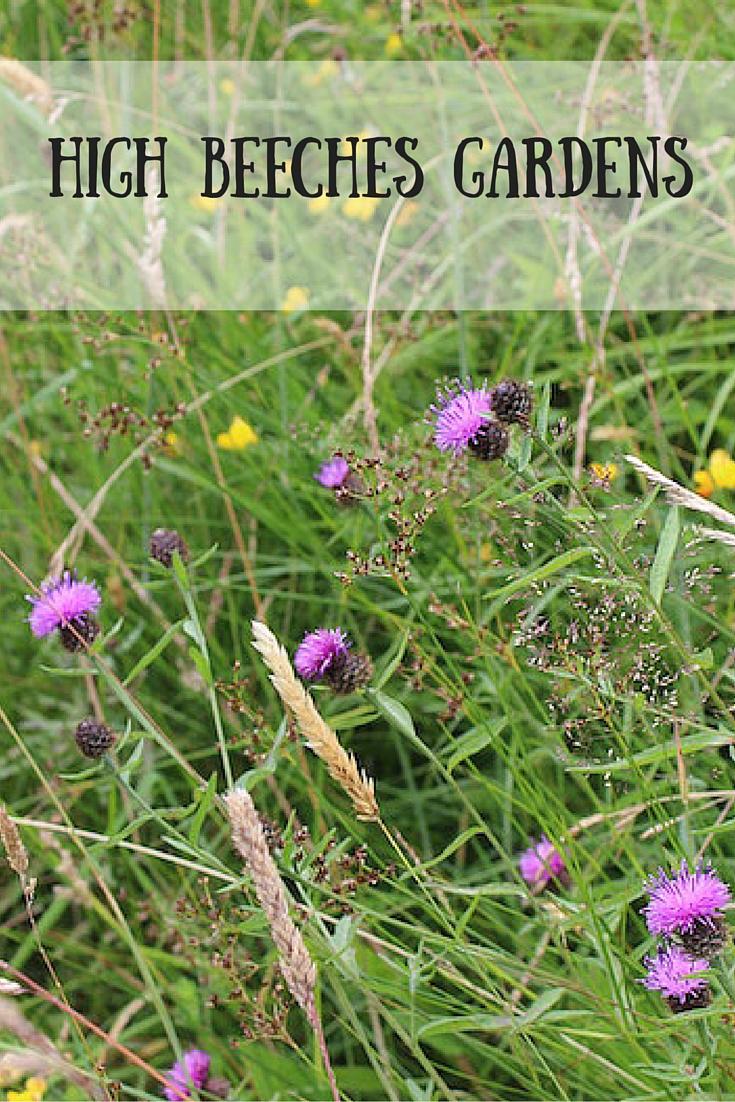 Beech Hurst Gardens-2