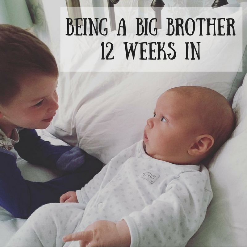 Being a Big Brother12 weeks in