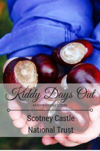 copy-of-kiddy-days-out