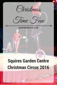 squires-christmas-circus