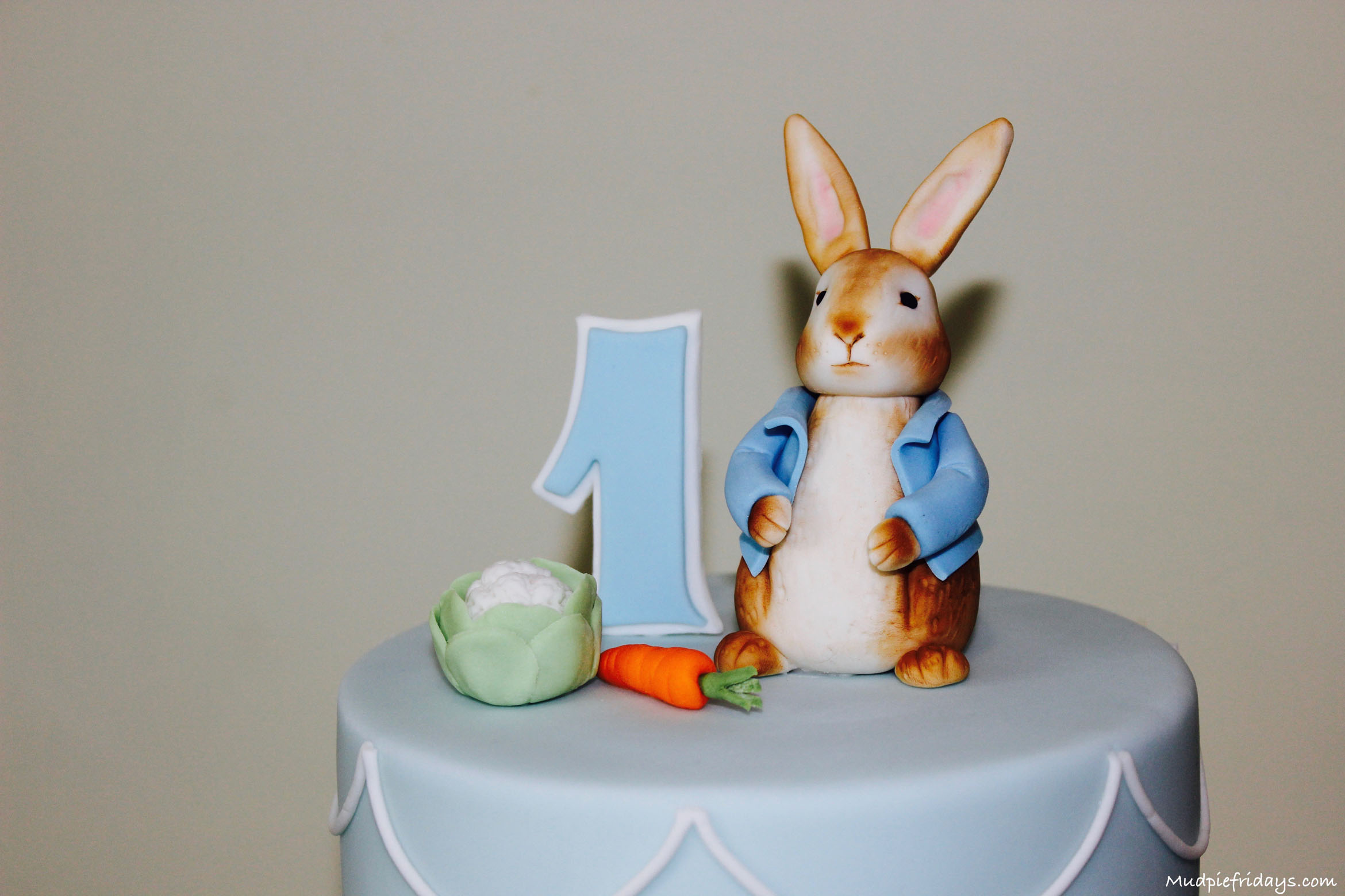 Brilliant Peter Rabbit Themed Birthday Party Personalised Birthday Cards Epsylily Jamesorg