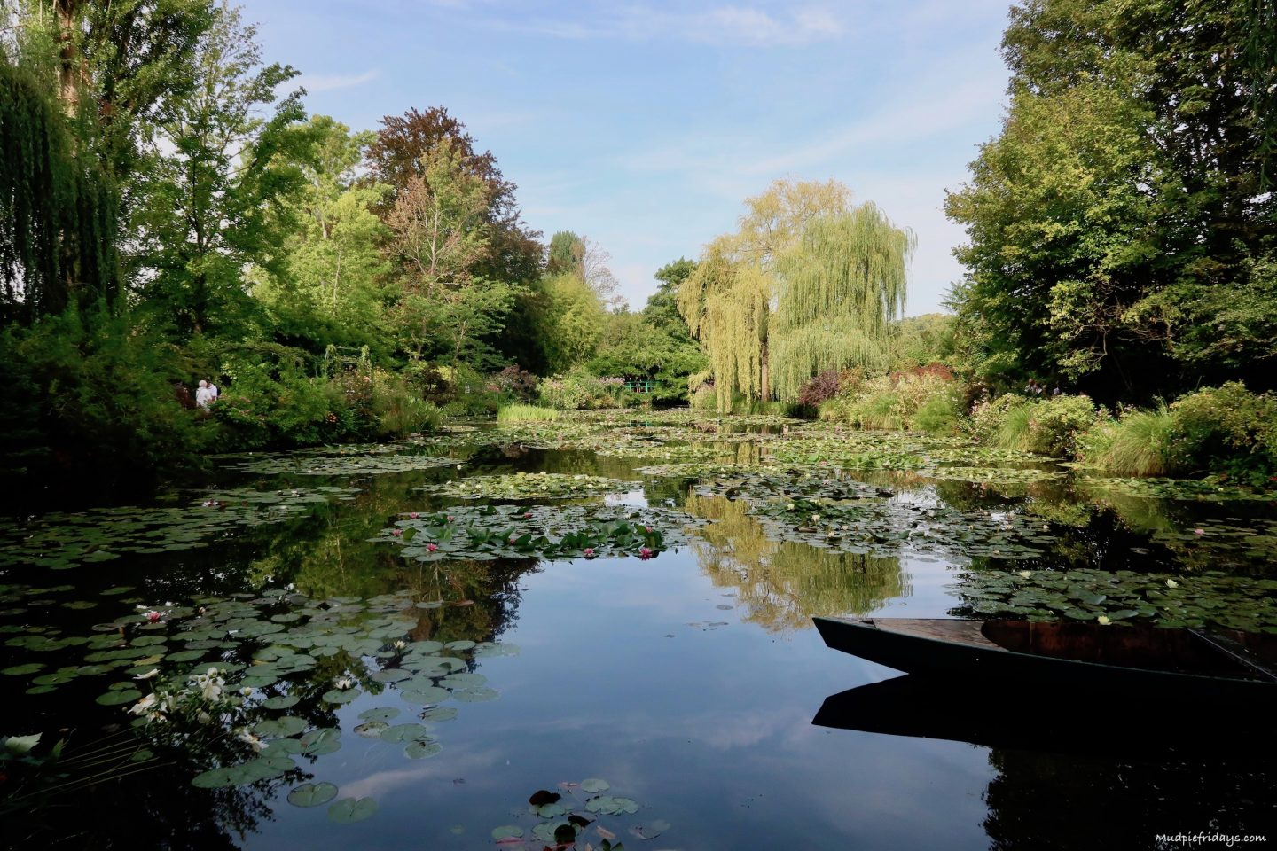 Our trip to Monet's water lilies