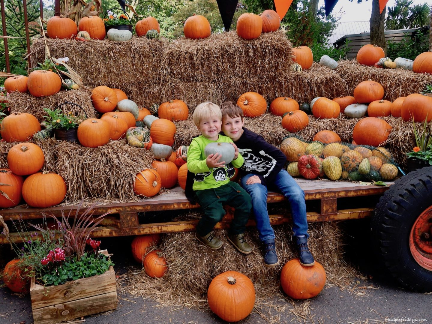 9 Reasons to visit Paultons Park this Halloween