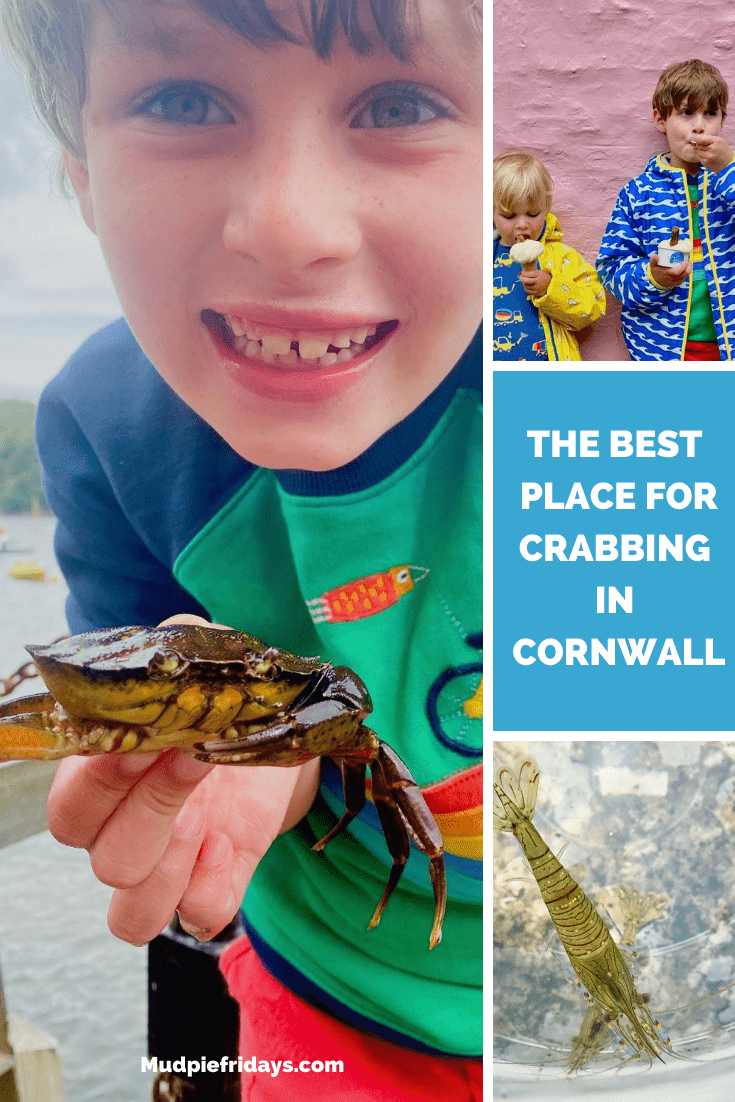 The best place for crabbing in Cornwall