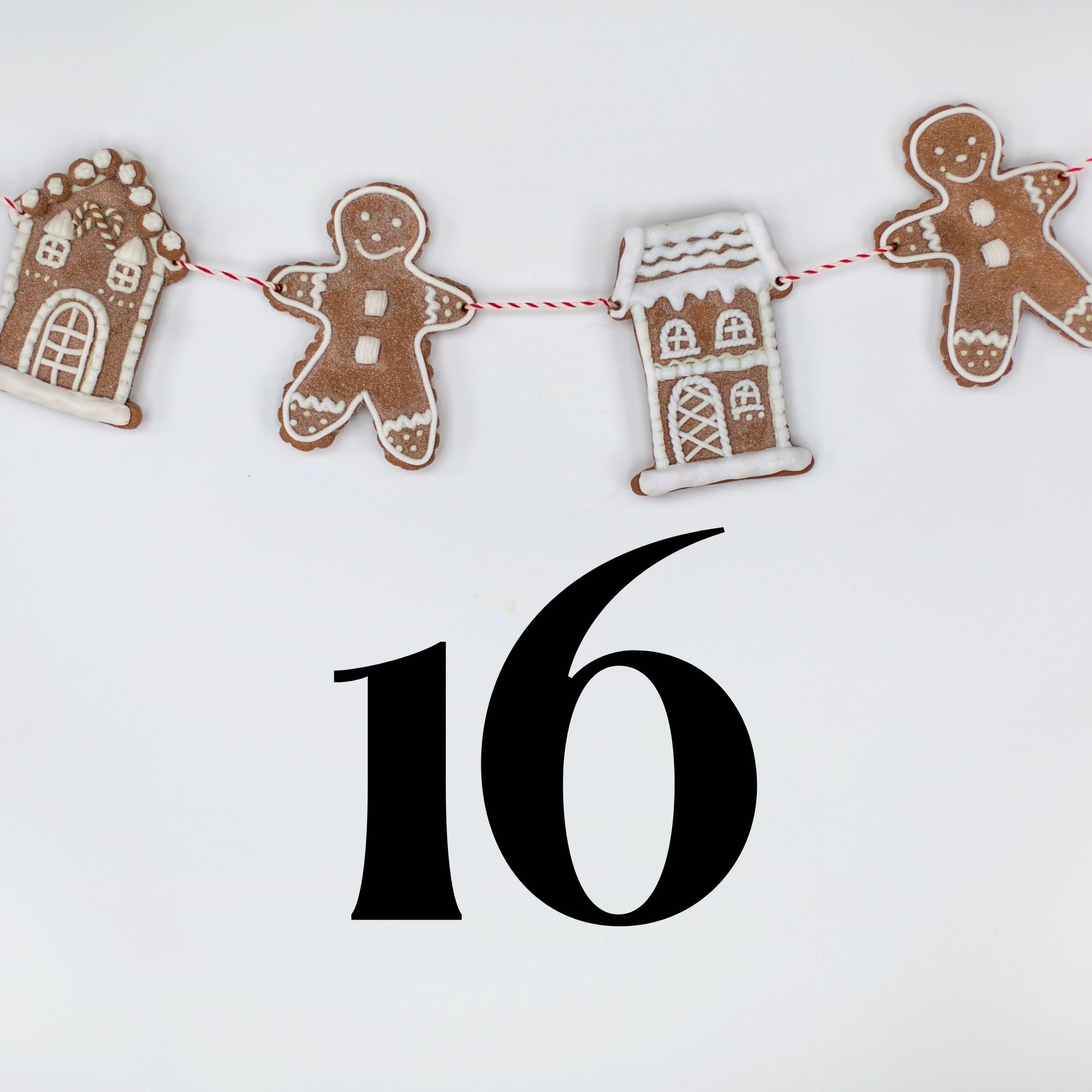 Advent Giveaway Day 16