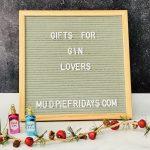 12 Gins of Christmas