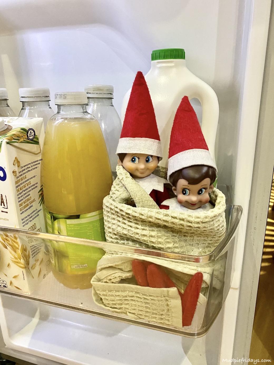 Elves in the fridge